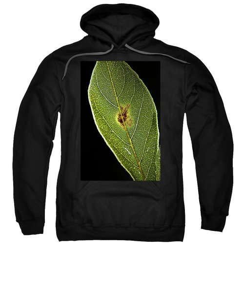 Leaf Sweatshirt