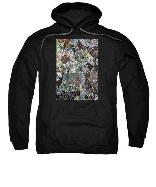 Lichens Sweatshirt