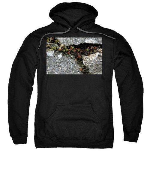 Life Lived In The Cracks Sweatshirt