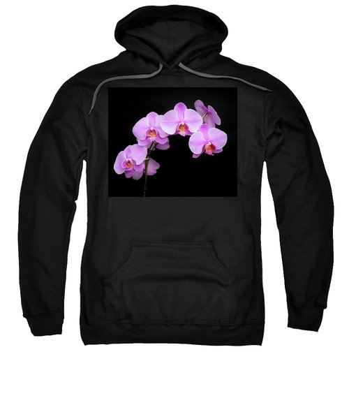 Light On The Purple Please Sweatshirt