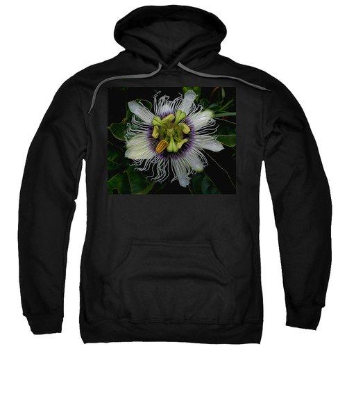 Lilikoi Passion Fruit Sweatshirt