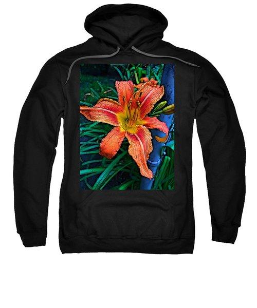 Lily Bold Sweatshirt