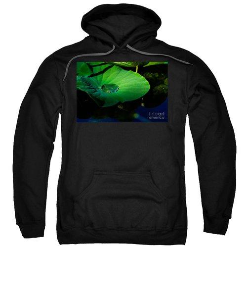 Lily Water Sweatshirt