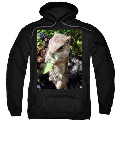 Little Nibbler Sweatshirt