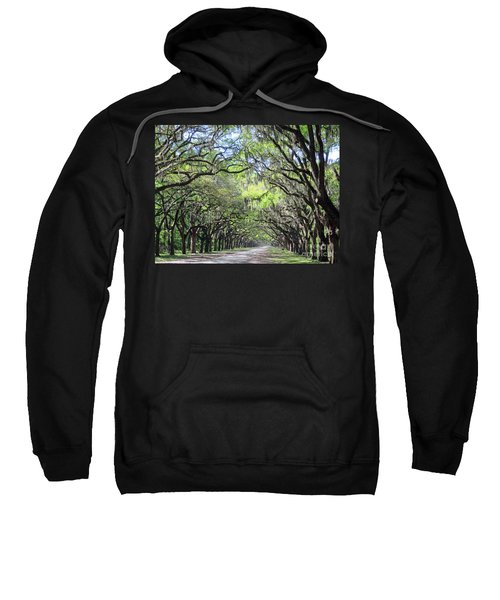 Live Oak Canopy Sweatshirt