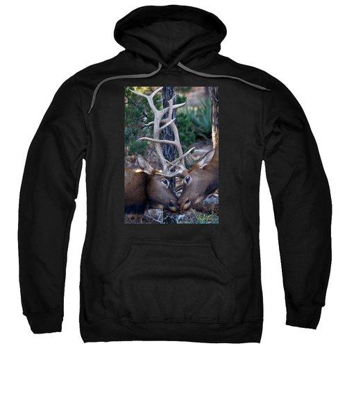 Locking Horns - Well Antlers Sweatshirt by Rikk Flohr