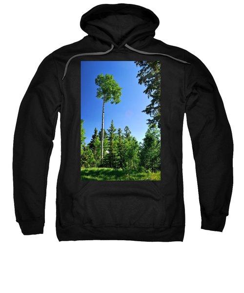 Lone Aspen Sweatshirt