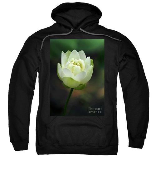Lotus Blooming Sweatshirt