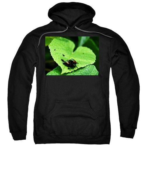 Love Bugs Sweatshirt