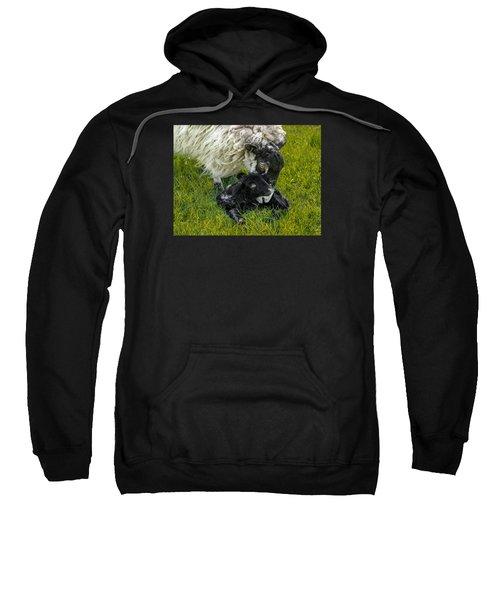 Just Born Sweatshirt