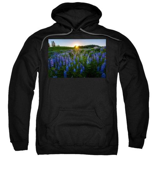 Lupine Meadow Sweatshirt