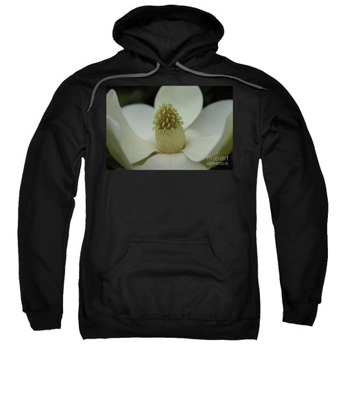 Magnolia Blossom 4 Sweatshirt