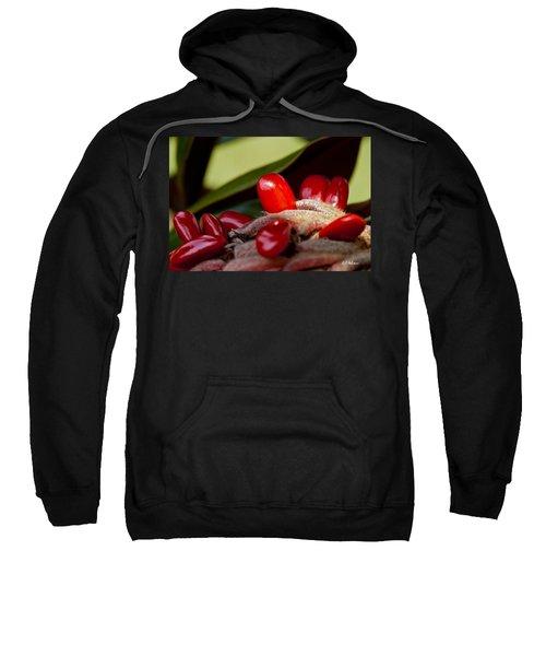 Magnolia Seeds Sweatshirt