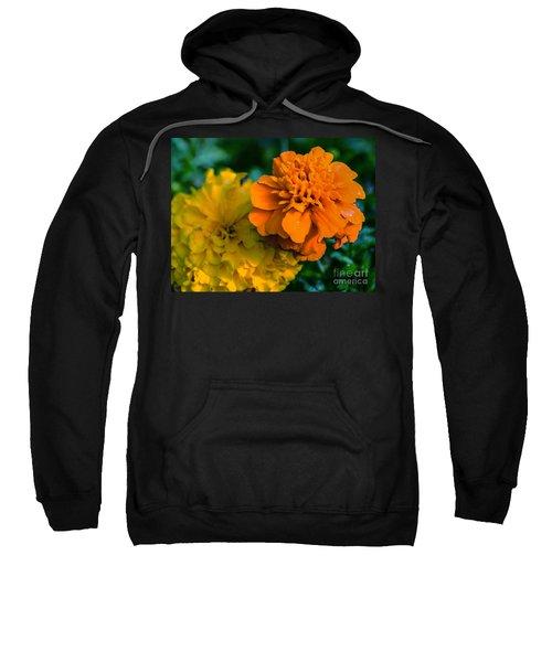 Marigold 1 Sweatshirt