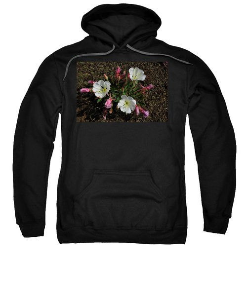 Mesa Blooms Sweatshirt