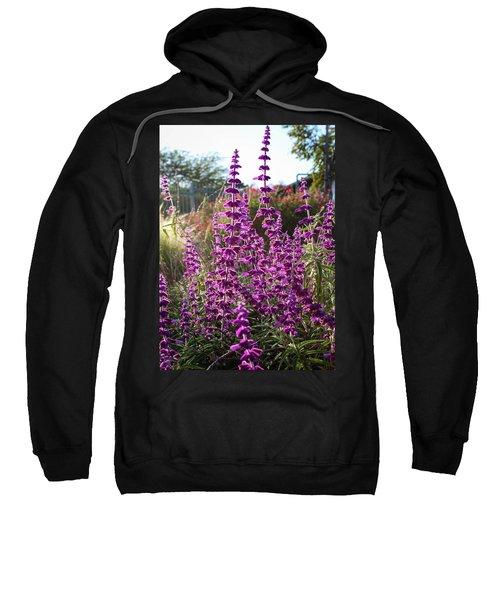 Mexican Sage Sweatshirt