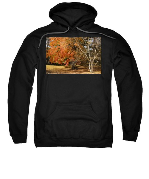 Michigan Autumn 1 Sweatshirt