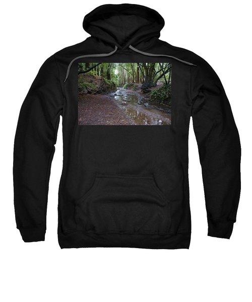 Miller Grove Sweatshirt