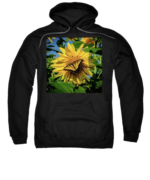 Male Eastern Tiger Swallowtail - Papilio Glaucus And Sunflower Sweatshirt