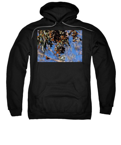 Monarch Sweatshirt