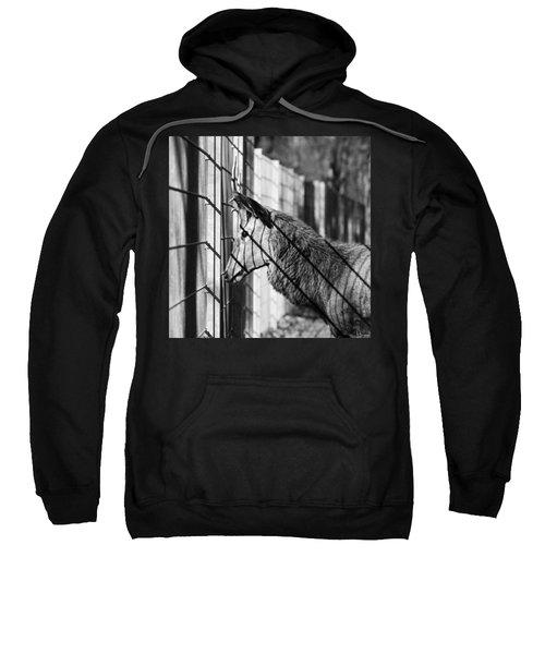#monochrome #canon #cage #blackandwhite Sweatshirt