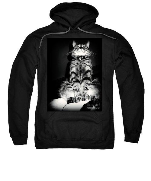 Monty Our Precious Cat Sweatshirt