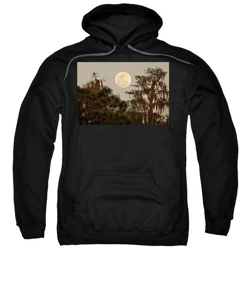 Moonrise Over Southern Pines Sweatshirt