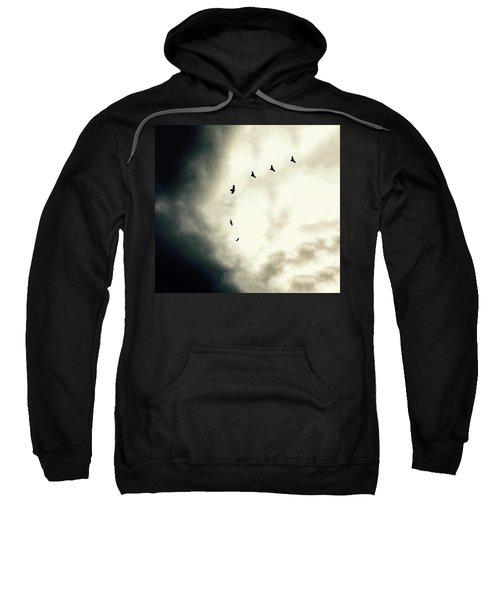 Big Sky Crows Sweatshirt