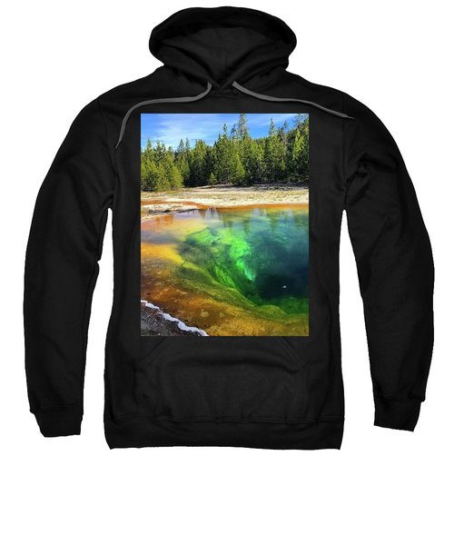 Morning Glory Pool Sweatshirt