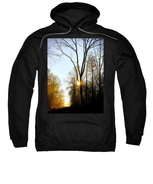 Morning Mood In The Forest Sweatshirt