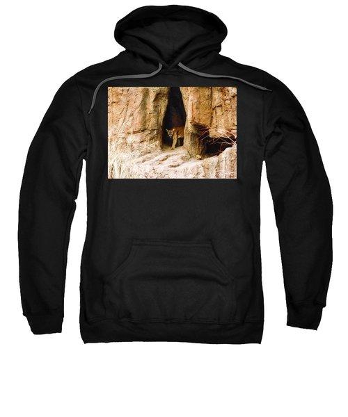 Mountain Lion In The Desert Sweatshirt