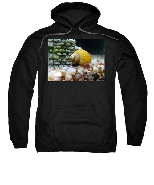 Mystery Snail Sweatshirt