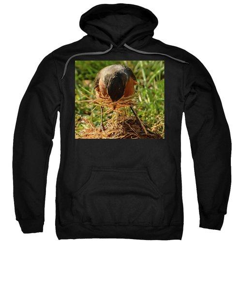 Nest Building Sweatshirt