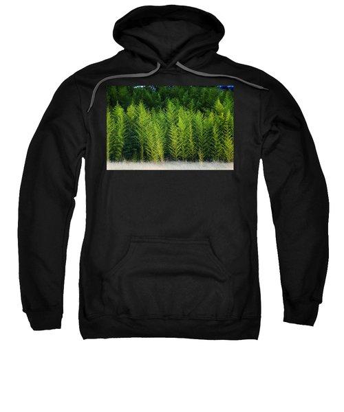 New Growth Sweatshirt
