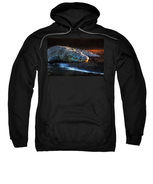 Nile Crocodile On Riverbank-1 Sweatshirt by Johan Swanepoel