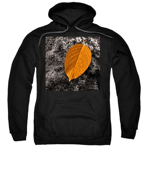 November Leaf Sweatshirt