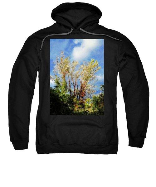 October Sunny Afternoon Sweatshirt