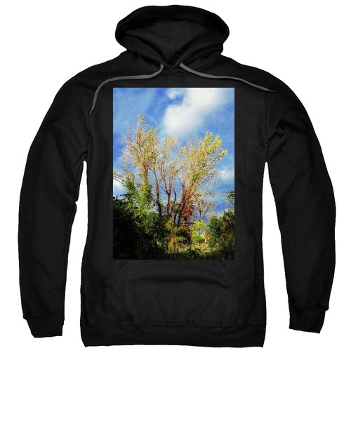 October Sunny Afternoon Sweatshirt