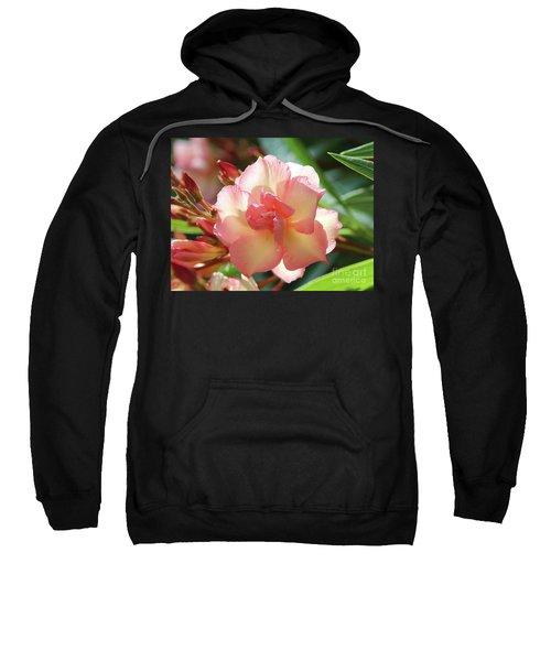 Oleander Mrs. Roeding 1 Sweatshirt