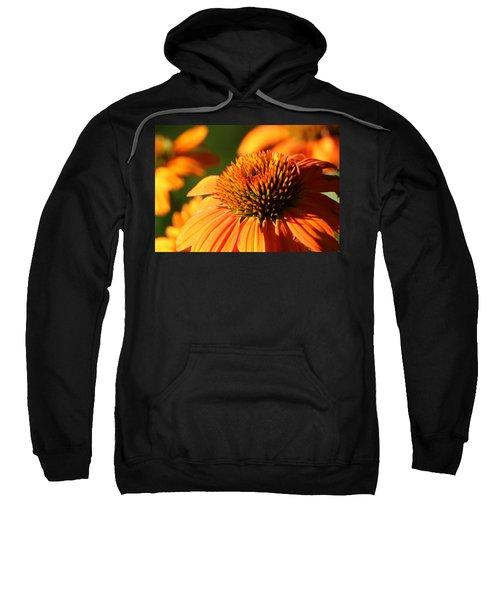 Orange Coneflower At First Light Sweatshirt