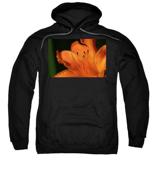 Orange Wave 3096 H_2 Sweatshirt