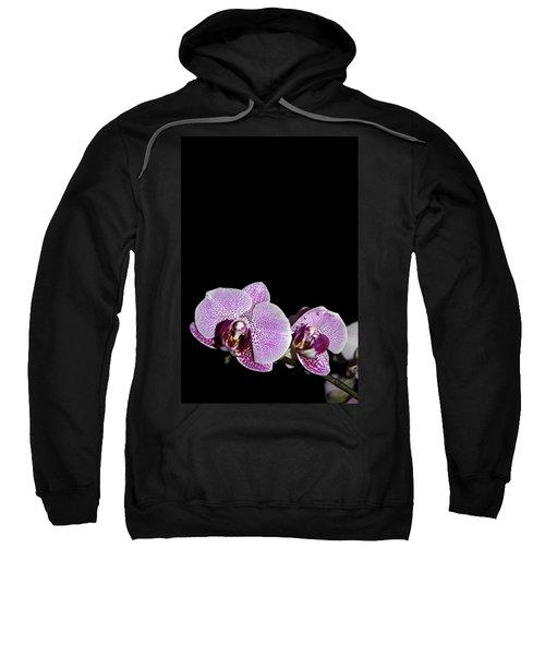 Orchid Blooms Sweatshirt