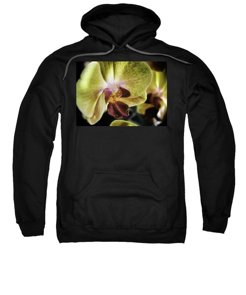 Orchid With A Tongue Sweatshirt