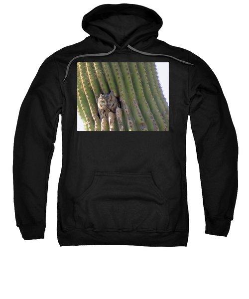 Owl In Cactus Burrow Sweatshirt