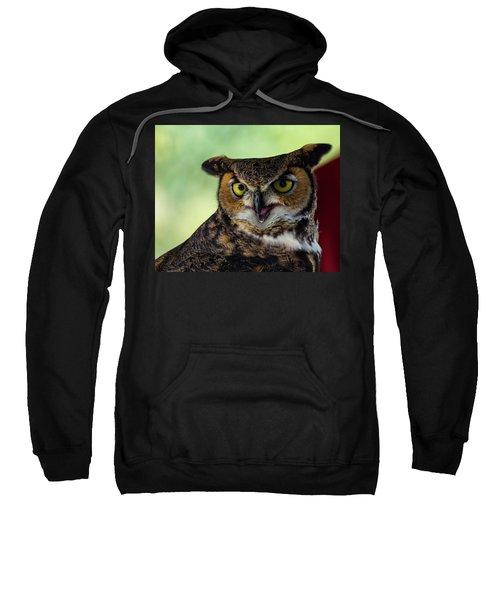 Owl Tongue Sweatshirt