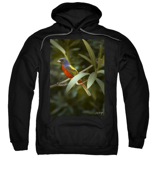 Painted Bunting Male Sweatshirt by Phill Doherty