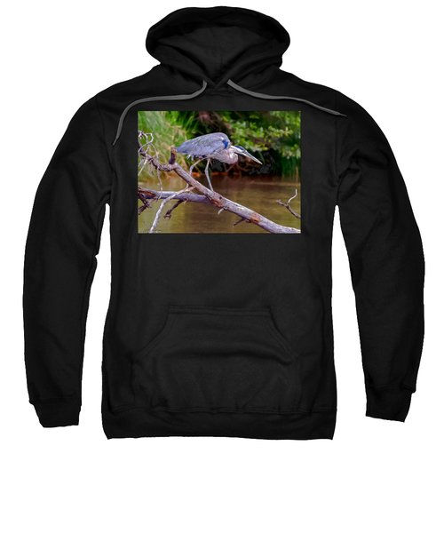 Painting Blue Heron Oak Creek Sweatshirt by Dr Bob Johnston