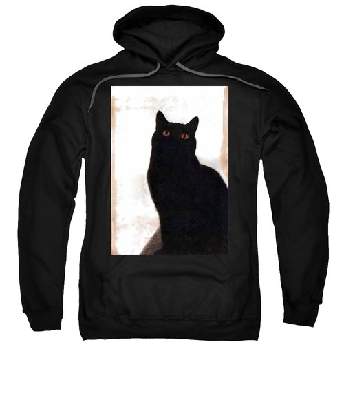 Panther The British Shorthair Cat Sweatshirt