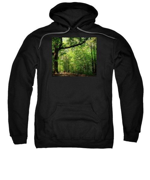 Paris Mountain State Park South Carolina Sweatshirt by Bellesouth Studio