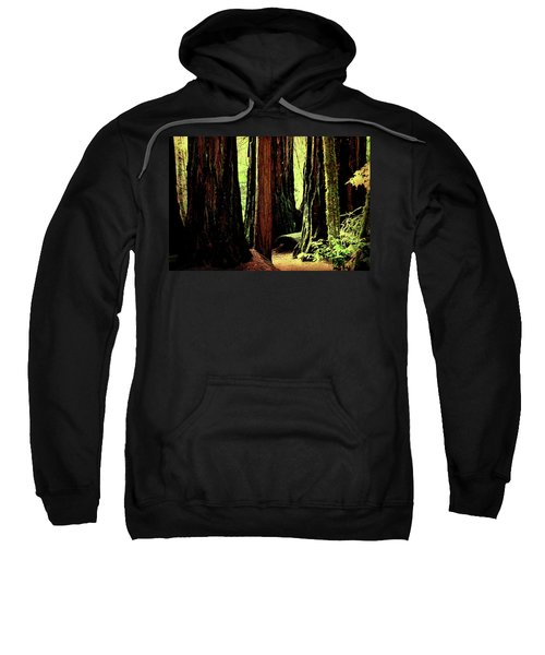 Path Through The Forest Edge . 7d5432 Sweatshirt